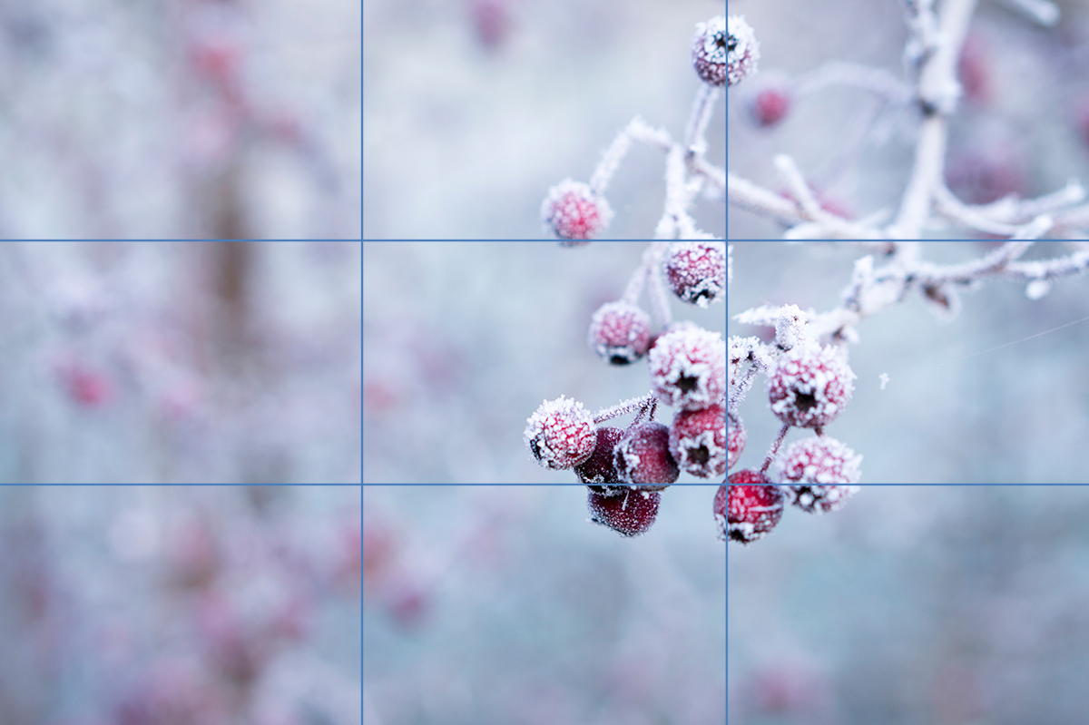 mobiltips-rule-of-thirds