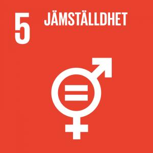 """en ikon med texten """"jämställdhet"""" som symboliserar nummer fem av FNs globala mål för hållbar utveckling"""