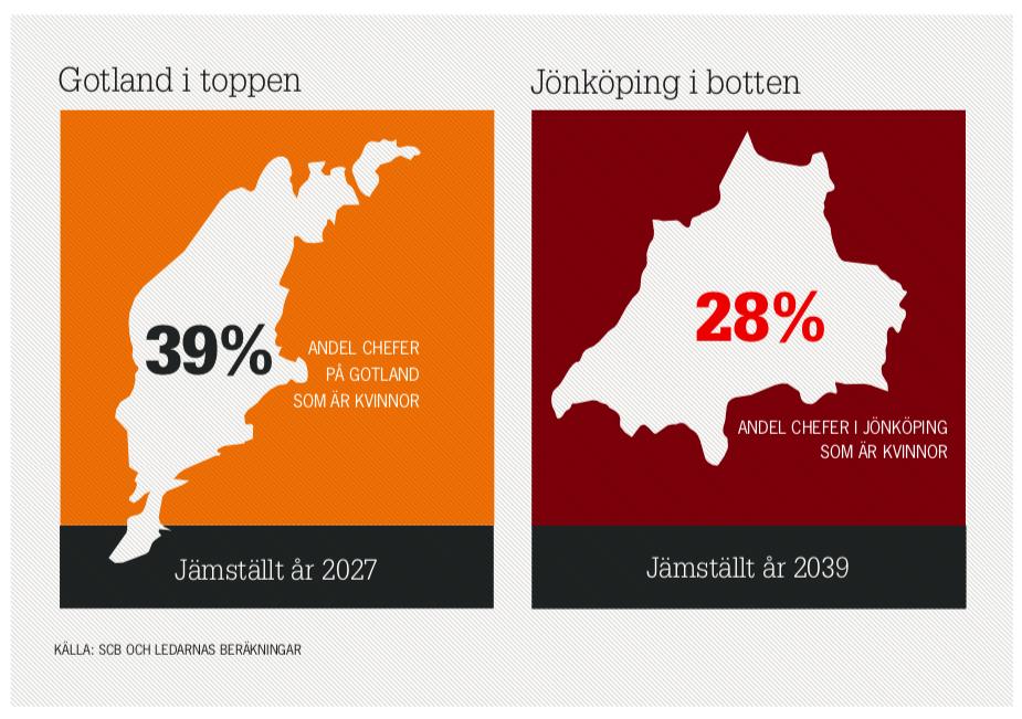 ledarnasjämställdhetsbarometer2015